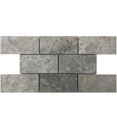 2 X 4 Natural Stone Mosaic Tile In Marine Fantasy