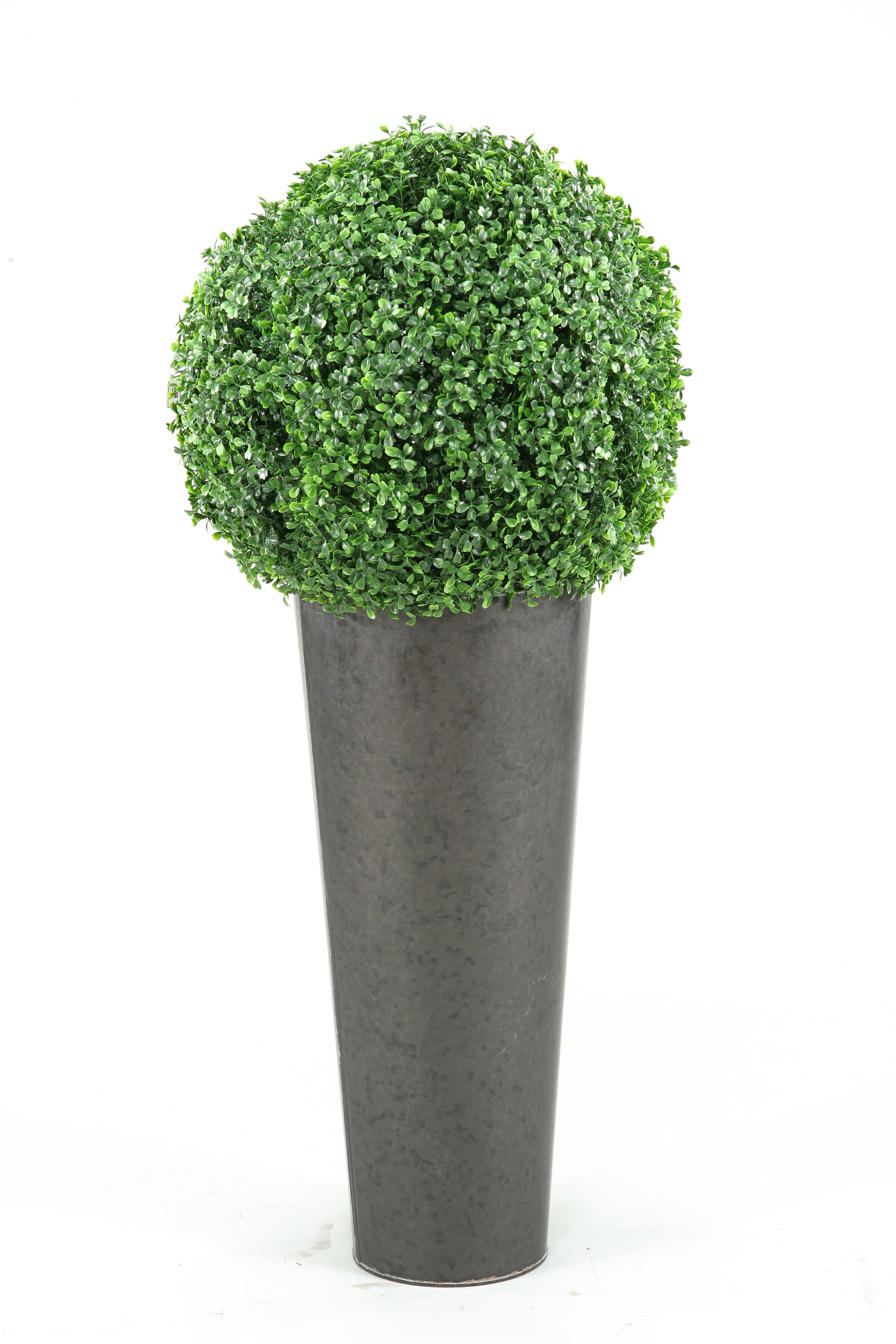 Boxwood Ball Round Topiary in Planter | Joss & Main on chrome planters, iron planters, long rectangular planters, bucket planters, stone planters, window boxes planters, copper finish planters, old planters, tall planters, urn planters, pewter planters, resin planters, large planters, plastic planters, round corrugated planters, corrugated raised planters, aluminum planters, wall mounted planters, stainless steel planters, lead planters,