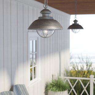 Outdoor hanging lights youll love wayfair archibald 1 light outdoor pendant aloadofball Image collections