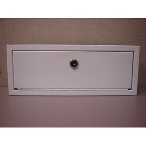 13 W x 5 H Wall Mounted Cabinet