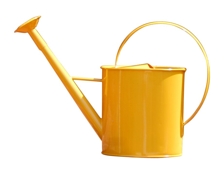 Olmeda 1 Gallon Watering Can With Long Spout