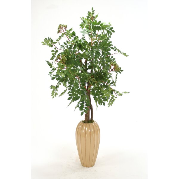 Distinctive Designs Silk Mountain Ash Floor Tree In Vase Wayfair