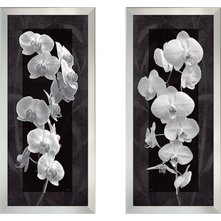 Orchid Once I 2 Piece Framed Graphic Art Print Set