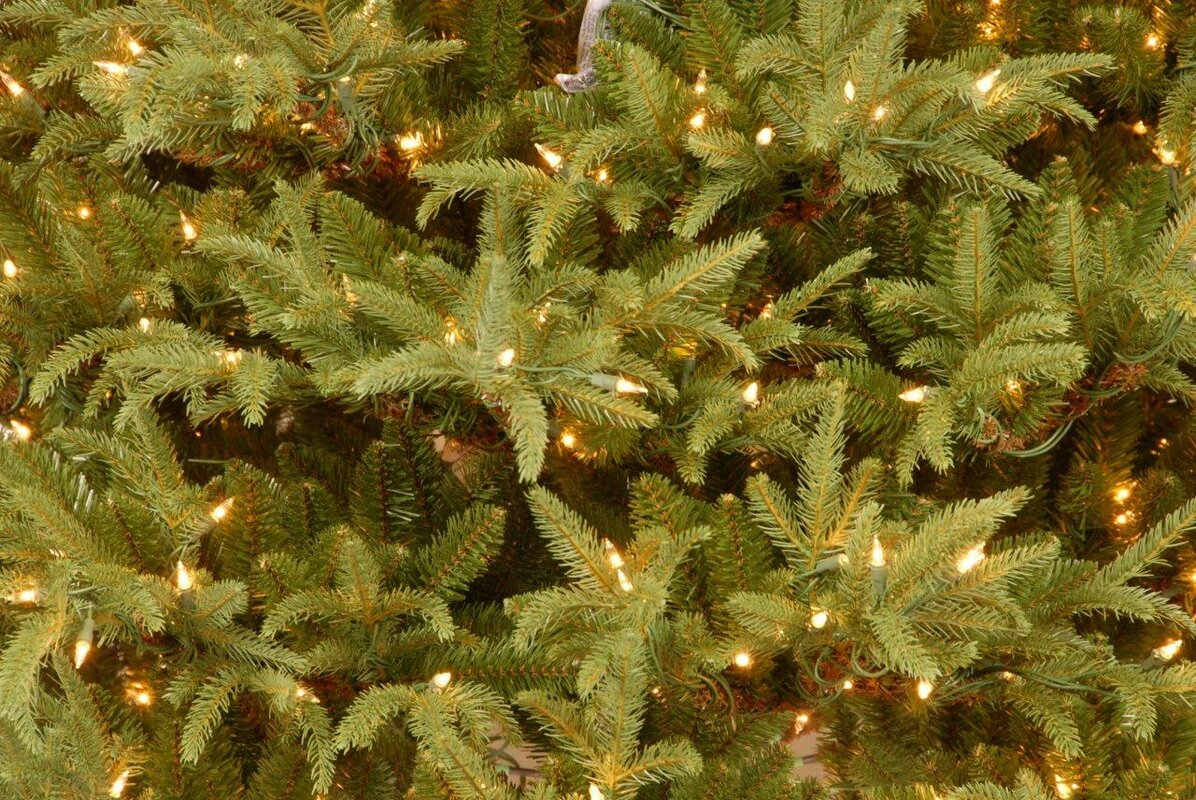 National Tree Co. Fraser 7.5' Green Artificial Christmas