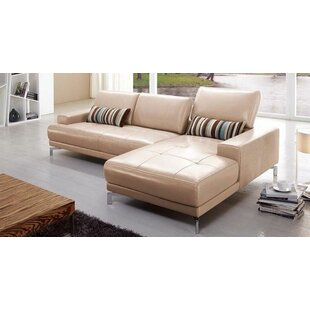 https://secure.img2-fg.wfcdn.com/im/59358130/resize-h310-w310%5Ecompr-r85/3304/33040063/leather-sectional.jpg