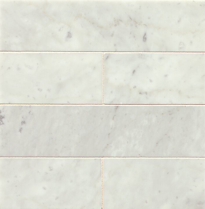 Gsmt 3 X 12 Honed Marble Field Tile In White Carrara Reviews