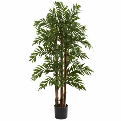 entracing palm tree type house plant. Parlor Palm Tree in Pot Nearly Natural Double Robellini Planter  Reviews Wayfair