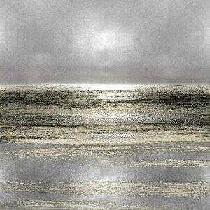'Silver Seascape I' Graphic Art Print on Canvas