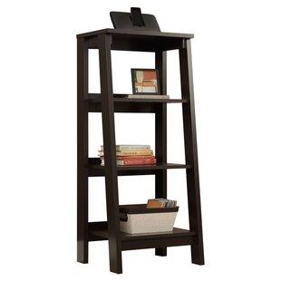 Massena Ladder Bookcase