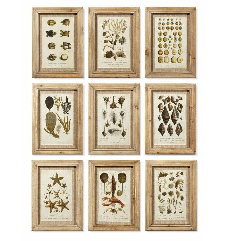 Birch Lane™ Aquatique Framed Graphic Art Print Set on Wood & Reviews ...