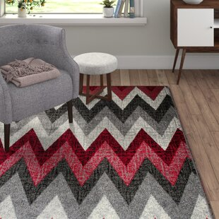 Amatrix Grey/Red Area Rug by Home & Haus