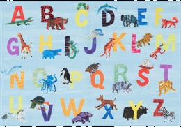 Kids Educational Rugs