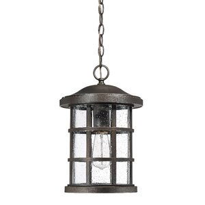 Autry 1-Light Outdoor Hanging Lantern
