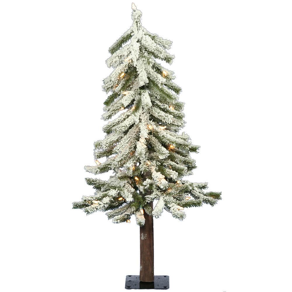 The Holiday Aisle Flocked Alpine 3\' Pine Trees White/Green ...