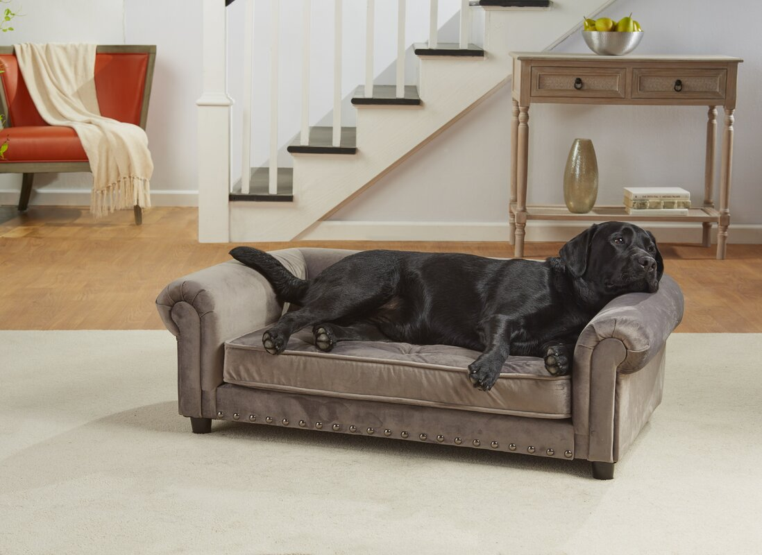 Manchester Velvet Tufted Dog Sofa with Cushion