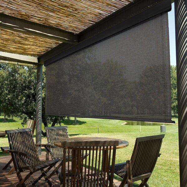 Surprising Outdoor Roller Sun Shades Wayfair Download Free Architecture Designs Xoliawazosbritishbridgeorg