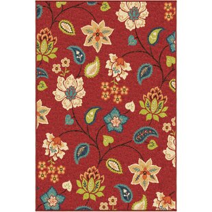 Red Outdoor Rugs You\'ll Love | Wayfair