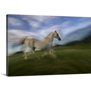 Wall Art Horses horse wall art | wayfair