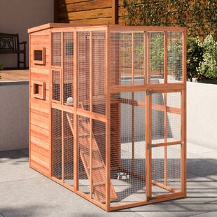 Frankie Cat Run Playpen & Cat Cages u0026 Playpens