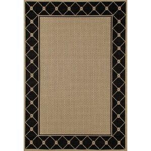 plymouth blackbeige area rug