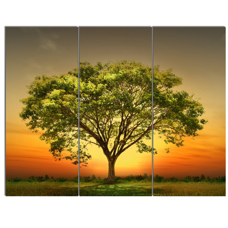 DesignArt \'Green Tree against Setting Sun\' 3 Piece Wall Art on ...