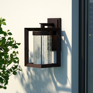 Trenton 1-Light Outdoor Wall Lantern