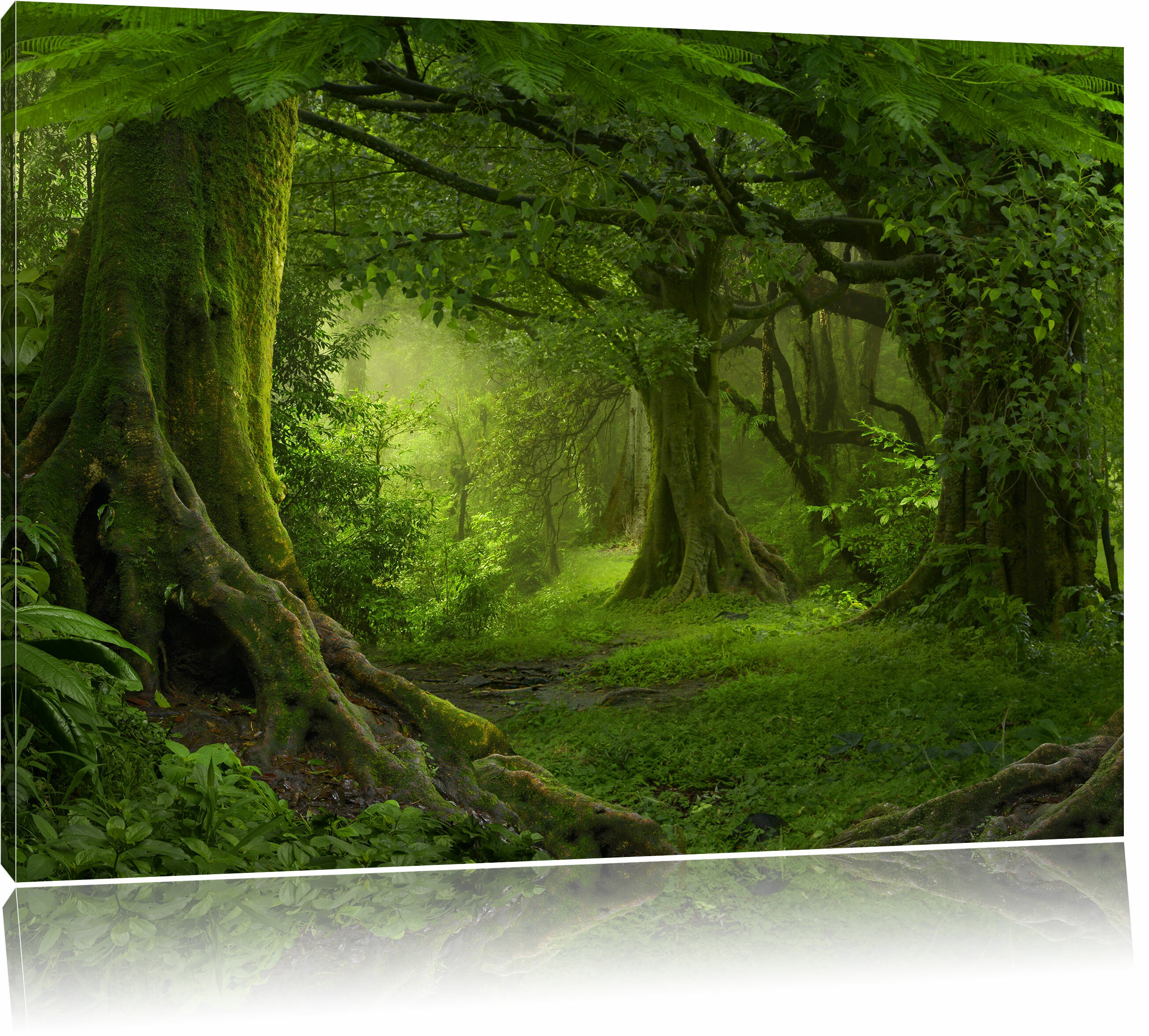 Home Loft Concept Tropical Rainforest Jungle Wall Art On Canvas
