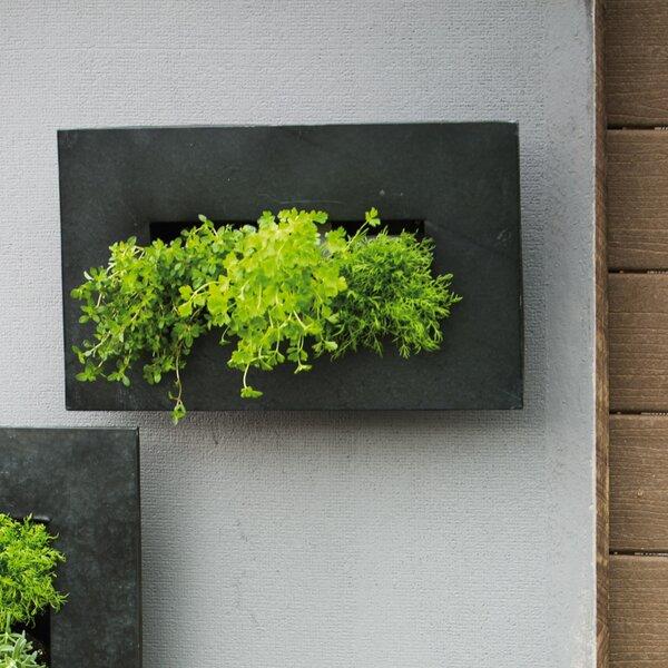 Metal Wall Pocket evergreen enterprises, inc zinc 12 pocket metal wall planter