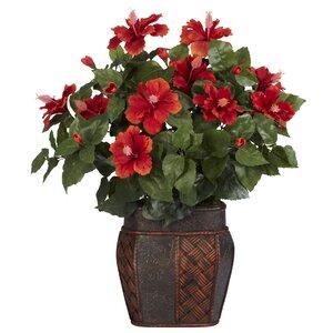 Hibiscus Desk Top Plant in Decorative Vase