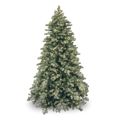 Darby Home Co Colorado 7.6' Green Spruce Artificial Christmas Tree with 750 Clear & White Lights
