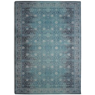 Eldridge Distressed Turquoise Area Rug