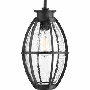 Janay 1-Light LED Outdoor Hanging Lantern