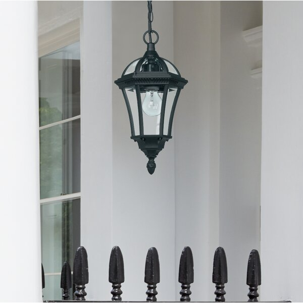 Lynton Garden Hafer 1 Light Outdoor Hanging Lantern Amp Reviews Wayfair Co Uk