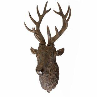 Deer Antler Wall Décor
