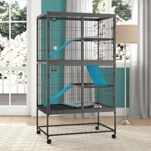Small Animal Housing Cages Hutches More You Ll Love Wayfair