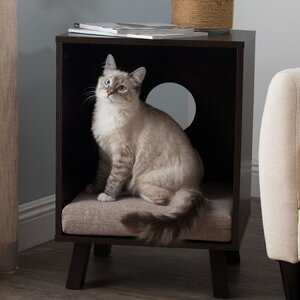 Pet Bed and End Table