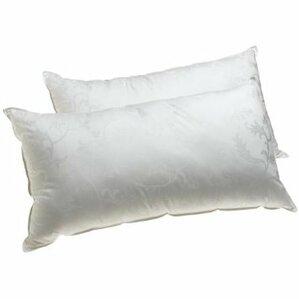 Dream Supreme Gel Fiber Queen Pillow (Set of 2) by Alwyn Home