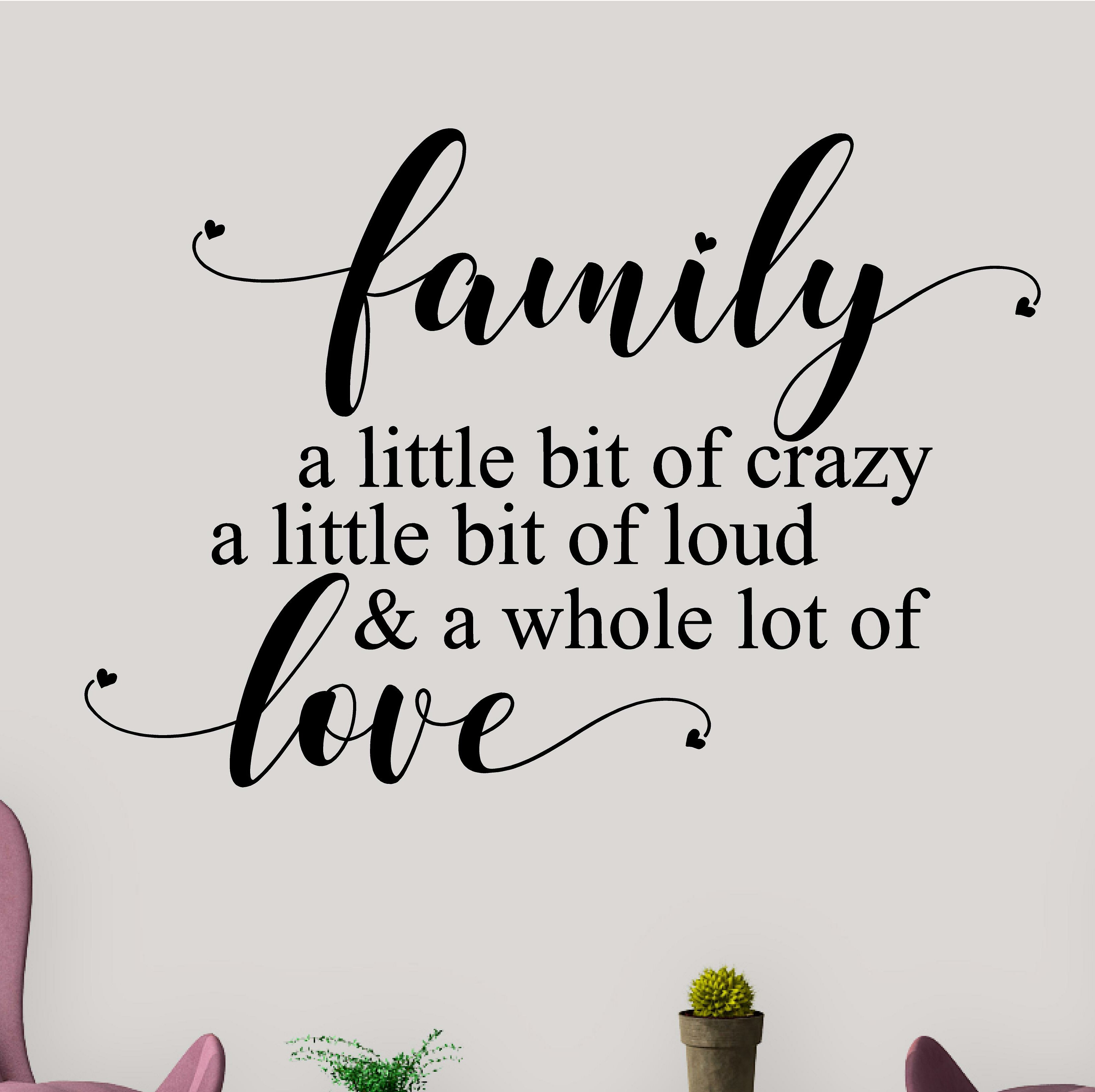 Winston porter family a little bit of crazy loud love letters words wall decals wayfair