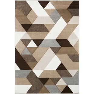 Affordable Price Browne Geometric Brown/White Area Rug By Trule Teen