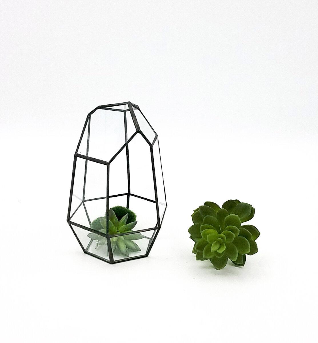 Hewson Tabletop Succulent Glass Terrarium Joss Main