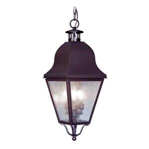Goodhue 3-Light Outdoor Hanging Lantern