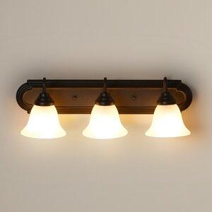 Daundelyon 3-Light Vanity Light