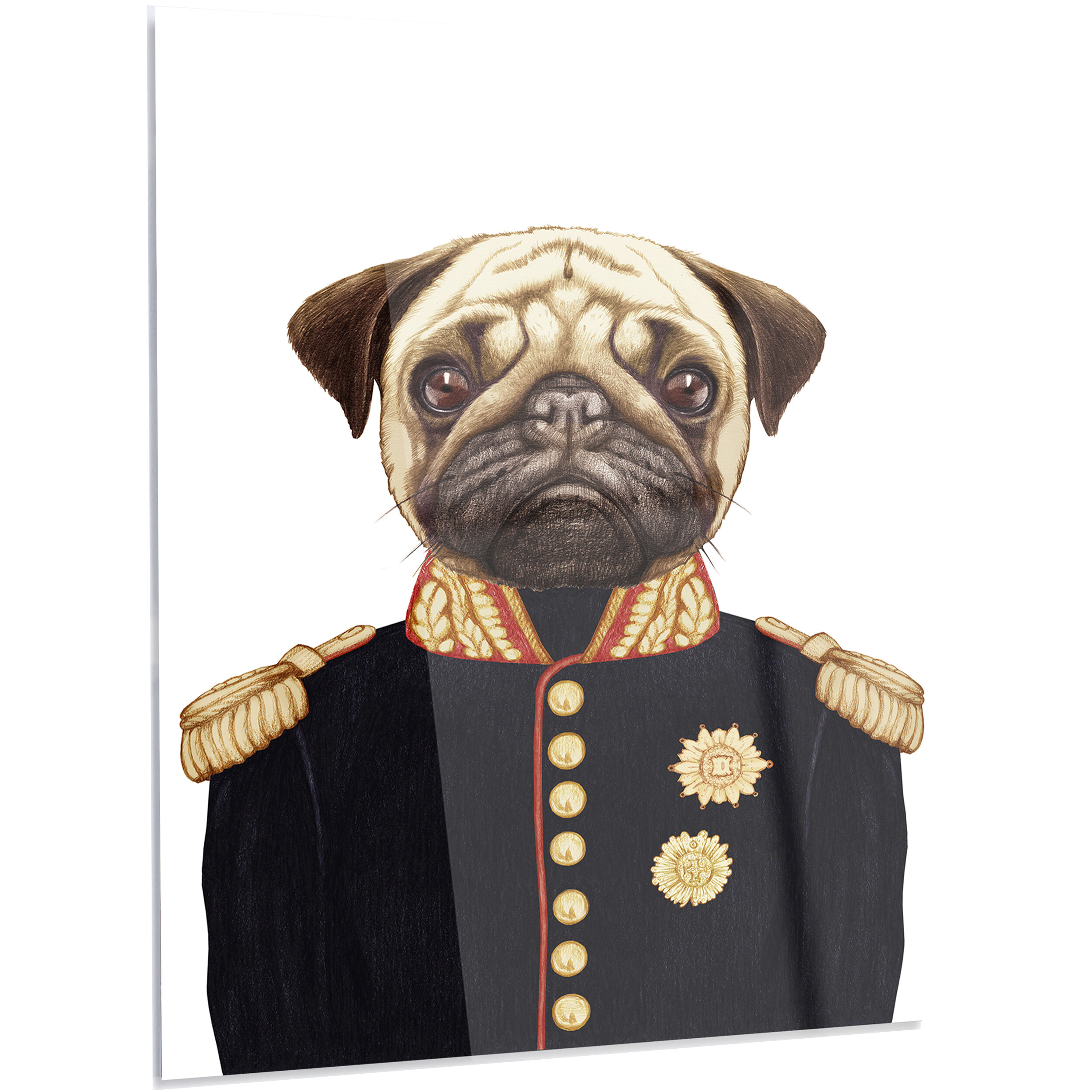 Designart Funny Pug Dog In Military Uniform Graphic Art