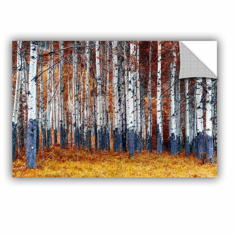 Artwall autumn forest wall mural reviews for Autumn forest 216 wall mural
