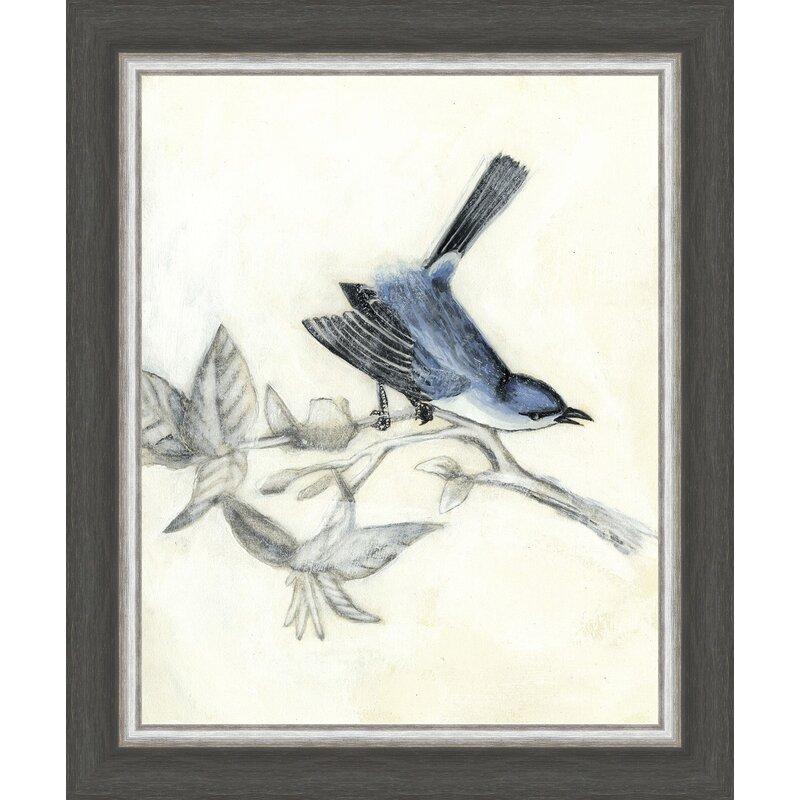 Birds Rustic Aviary Iii Framed Painting Print