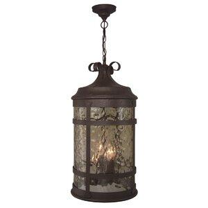 Oakhill 4-Light Outdoor Hanging Lantern