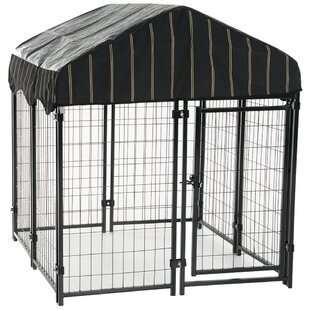 Dog Kennels You'll | Wayfair on dog kennel designs for two dogs, double dog houses for large dogs, large dog houses for two dogs, dog house for dogs 3, dog house kits for two dogs, mutiple dog house dogs, building a dog house for two dogs, dog houses for big dogs, insulated dog houses for two dogs, dog houses for multiple dogs,