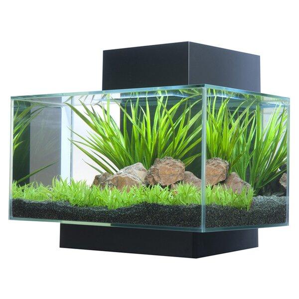 Fish Tanks Amp Aquariums You Ll Love Wayfair