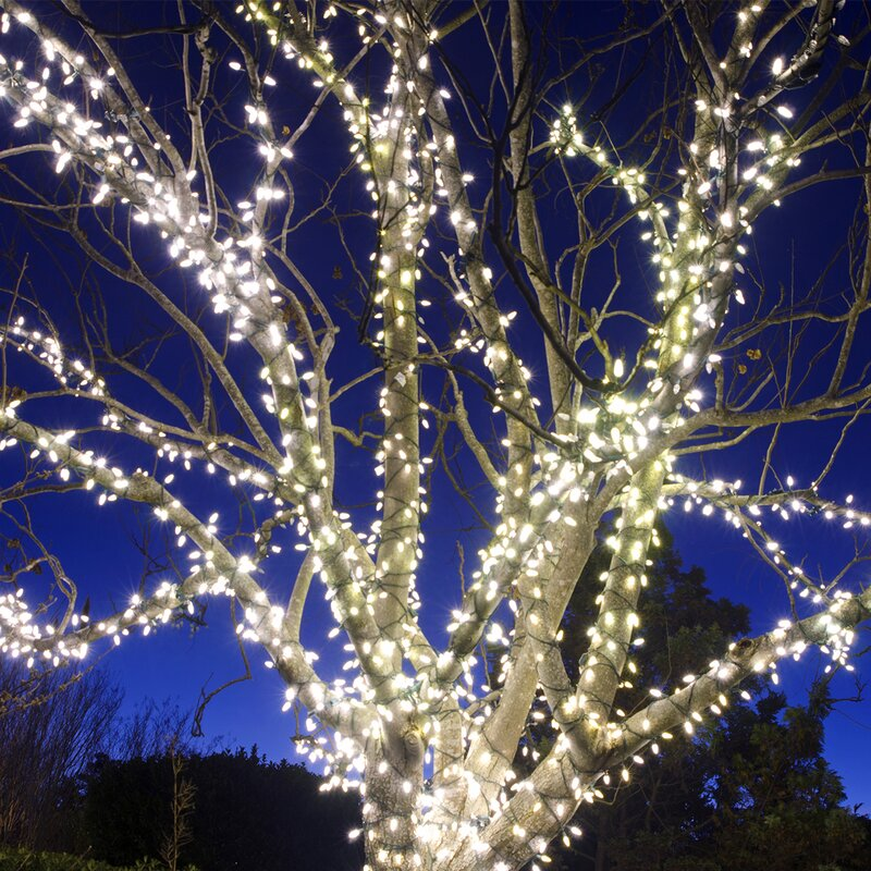 The Holiday Aisle Liteup 200 Solar String Lights Amp Reviews