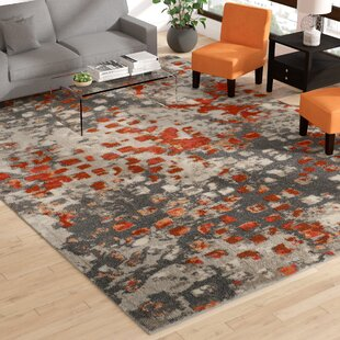 Annabel Gray Orange Area Rug